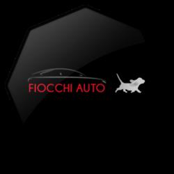 ottagono-fiocchi-auto-logo